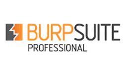 BURPSUITE PROFESSIONAL